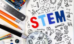 stem stock image