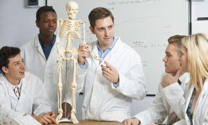 teacher-explaining-skeleton