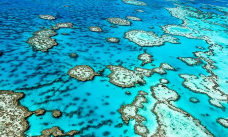 Great-Barrier-Reef-QLD