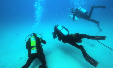Divers off Maria Island. Credit Craig Johnson