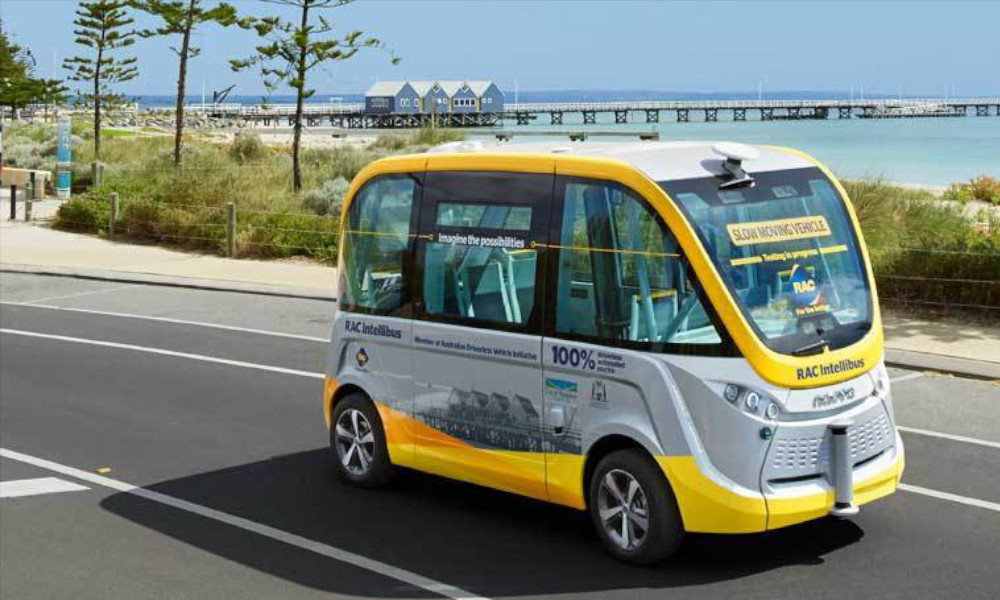 RAC-Intellibus-Busselton-trial
