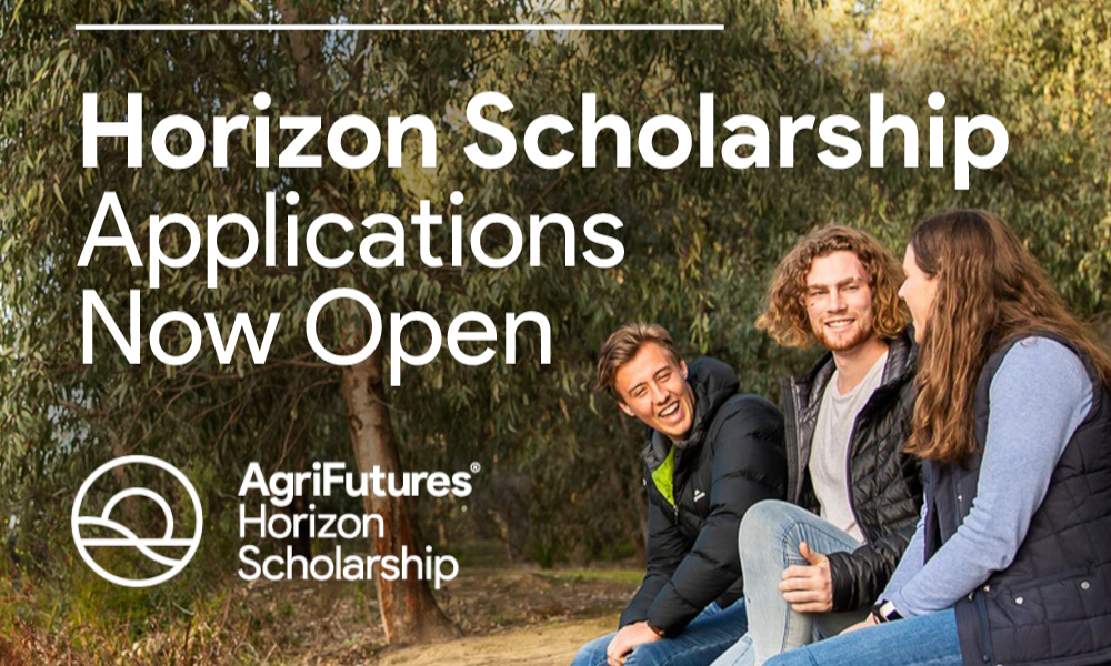 Horizon Scholarship Apps Open_Square 2