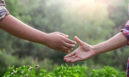 Biodiversity Stewardship Program